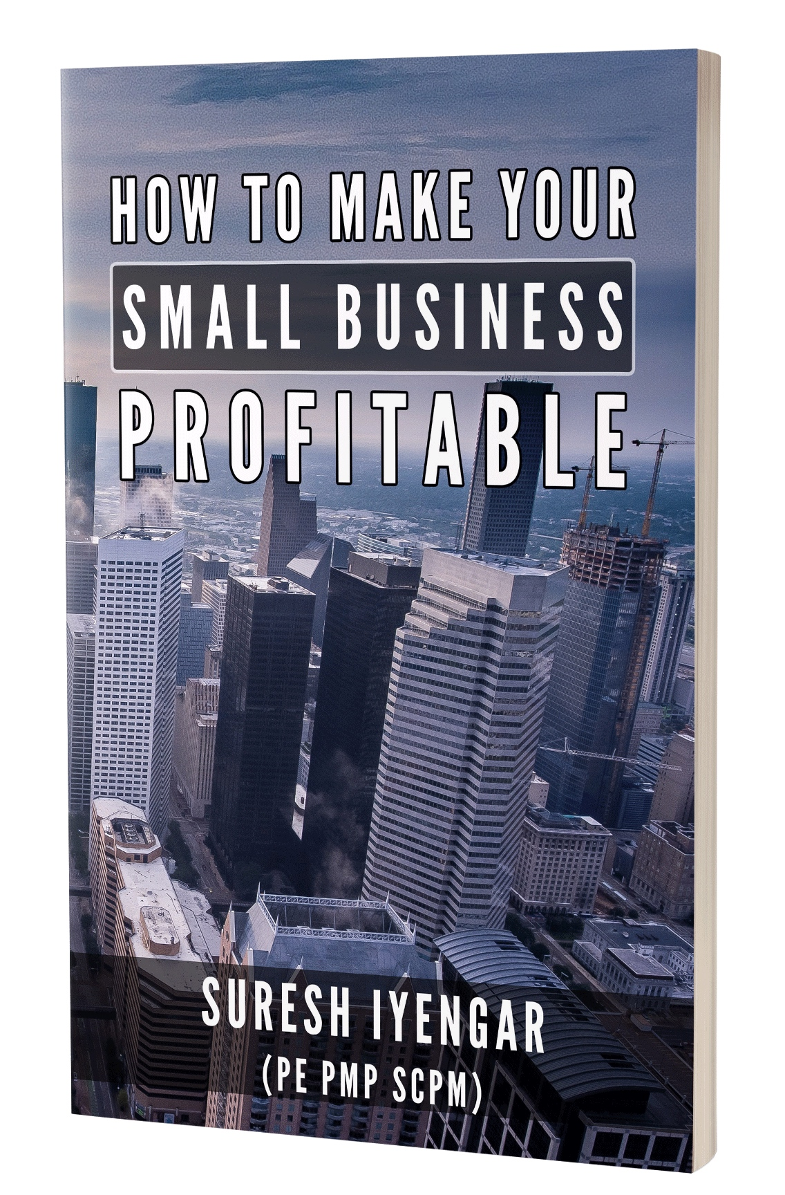 micro business evaluation Business cycles and problems encountered by small business concerns this insight will allow the licensee to  valuation guidelines for sbics .